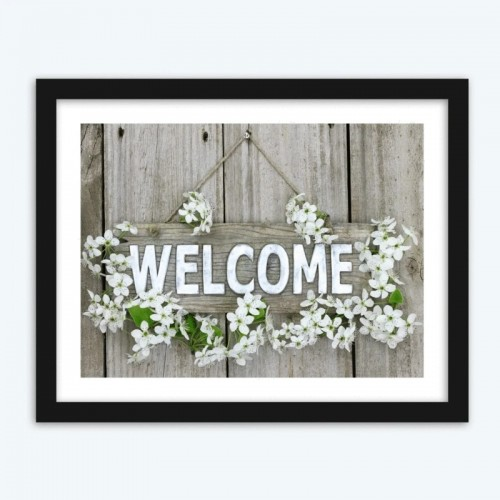 Welcome Orchids