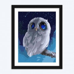 Cartoon Owl diamond paintings Kit