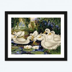 Ducks diamond paintings Kit