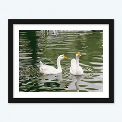 Ducks Pair diamond paintings Kit