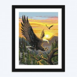 Eagle diamond paintings Kit