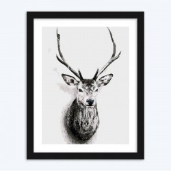 Black and White Deer  diamond paintings Diamond Painting