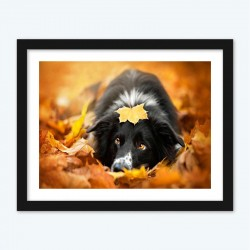 Maple Leaf Dog Pet Diamond Painting diamond paintings Kit