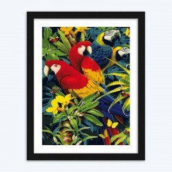 Macao African Parrots Adult DIY Diamond Painting kits