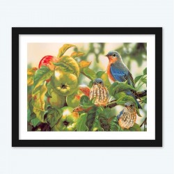 Family Of Birds On Apple Tree