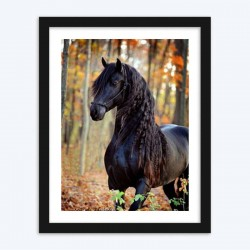 Horse with Long Hair