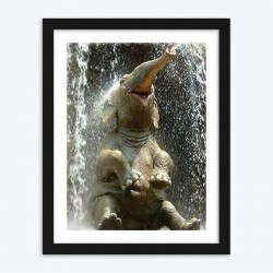 Baby Elephant in Water Diamond Painting Kit