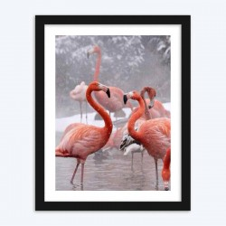 Flamingos  Art Diamond Painting Kits