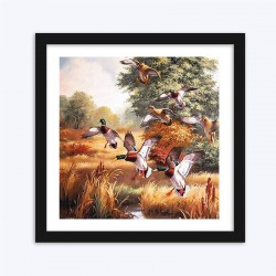 Beautiful Ducks  Art Kit