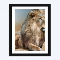 Attractive Lion DIY  Art Kit