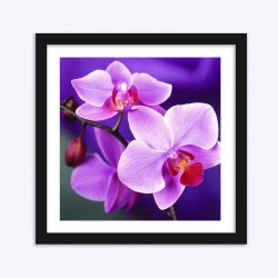 Lovely Purple Orchids