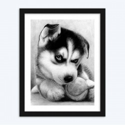 Angry Black & White Puppy Paint by  Diamonds