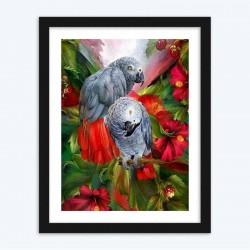 Beautiful Grey Parrots in Covered in Flowers