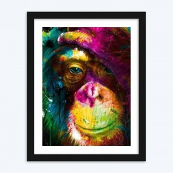 Amazing Colorful Monkey