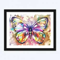 Big Colorful Butterfly   Kits