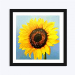 Sunflower Close up  Art Kit